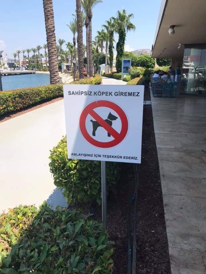 sahipsiz köpek giremez tabela