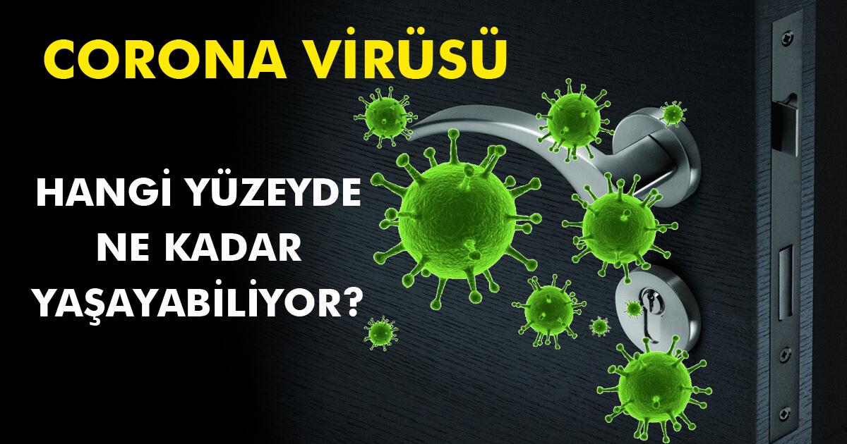 Beklenen soru yanıtlandı: Corona Virüs hangi yüzeyden bulaşır?