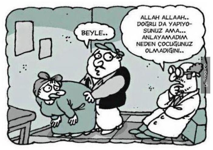 beyle2